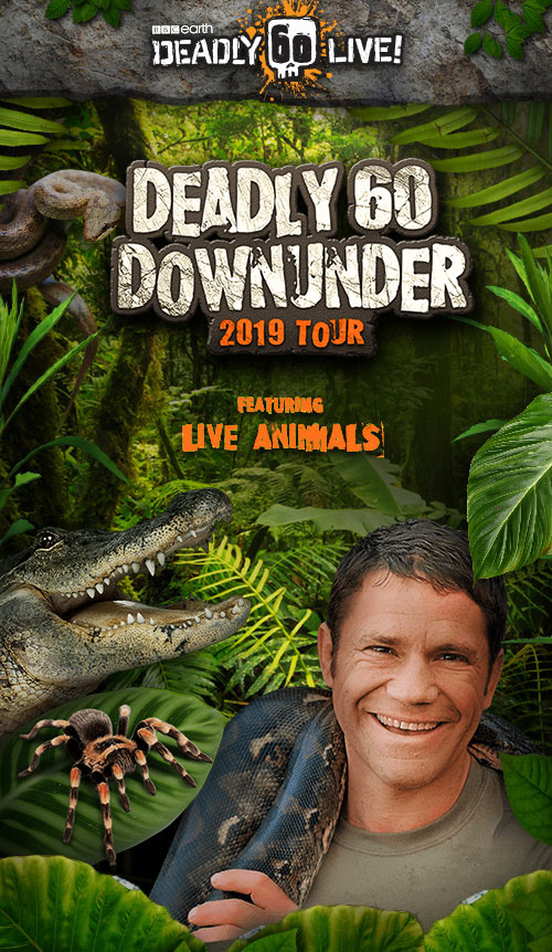 Deadly 60 Down Under | Live on Stage 2019